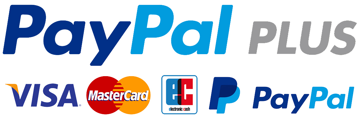 Paypal_Plus_Zahlung